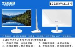 长城Wescom 显示器 E2225W白色直面IPS技术VGA(带VGA线)