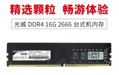 光威(Gloway)16GB 2666频率 DDR4 台式机内存(终身质保)