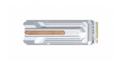 影驰 名人堂 M.2 PRO2T PCIE4.0通道 5G速度固态硬盘