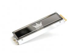 影驰(Galaxy) 名人堂HOF EXTREME 1T M.2 PCIE4X 7G SSD固态硬盘