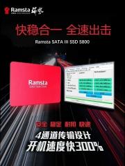 瑞势固态硬盘S800-256G