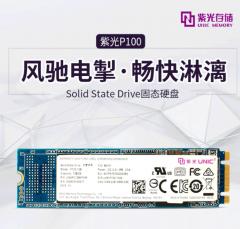 紫光 /UNIC P100 256G M.2 NVME SSD台式机笔记本固态硬盘