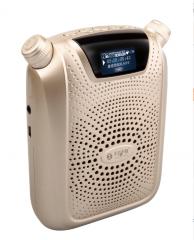 不见不散 T500小蜜蜂扩音器 教师 导游专用教学大功率音箱 金色