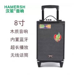 汉笙/太阳升Y8-2T(H8-2T) 蓝牙音箱手提便携式插卡背带大功率低音炮户外广场舞音响 黑色